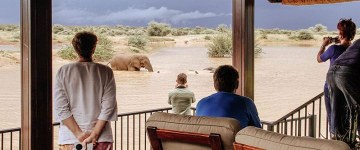 Erindi: Safari Destination Like No Other