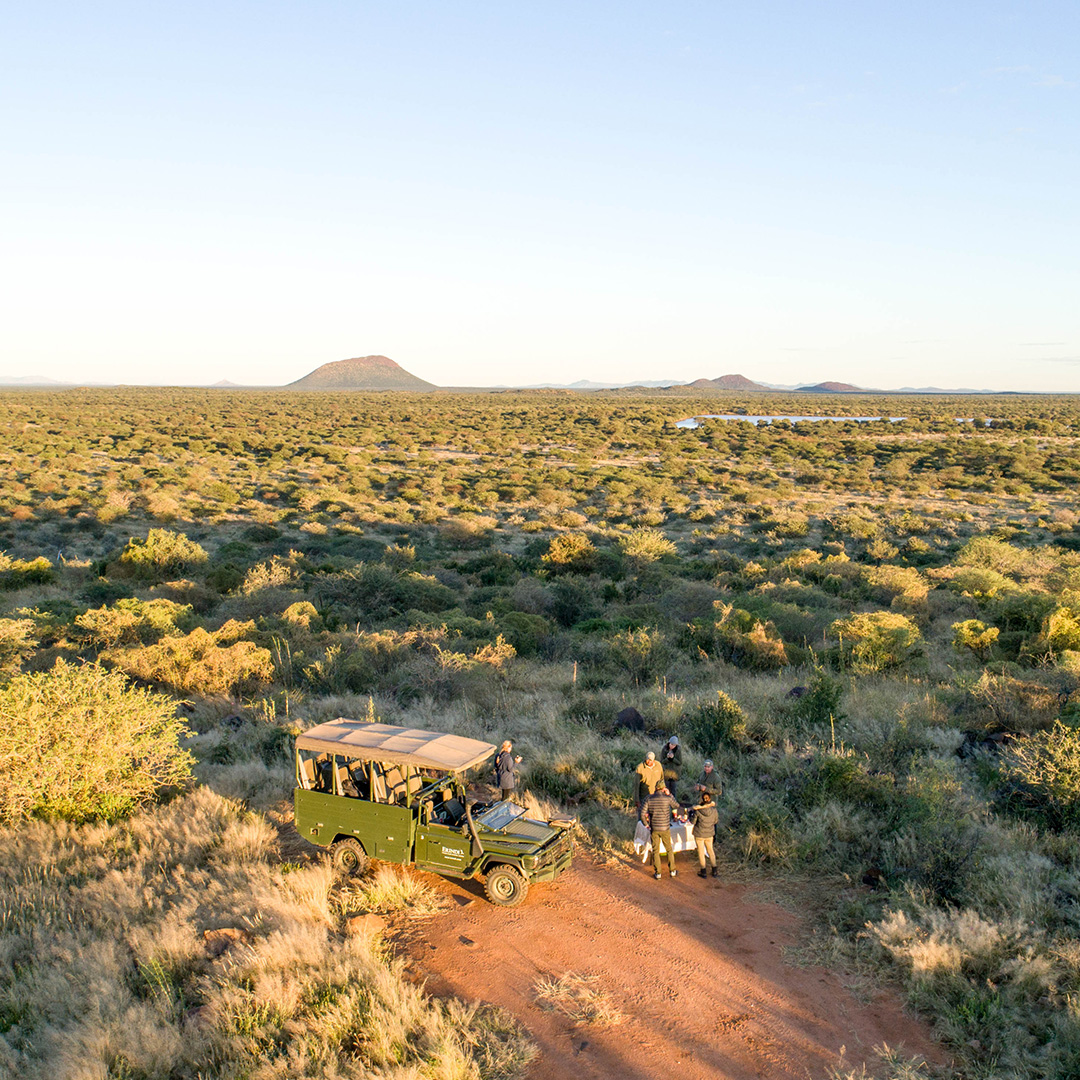 Namibian Safari Activities
