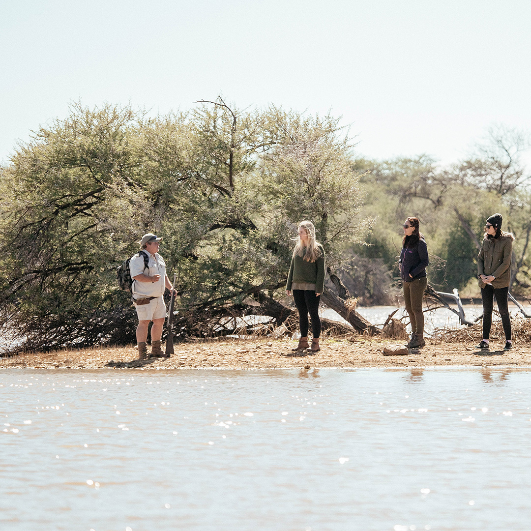 Walk in the Namibian Bush Activities