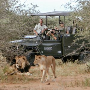 Private Game Drive