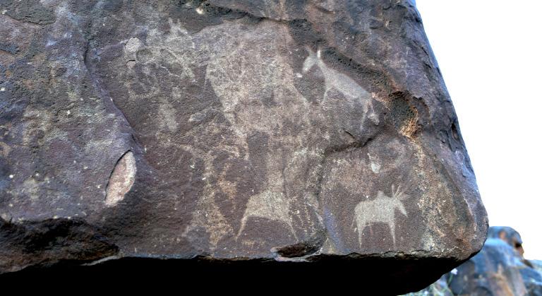 Erindi San & Rock Petroglyph Conservation Project